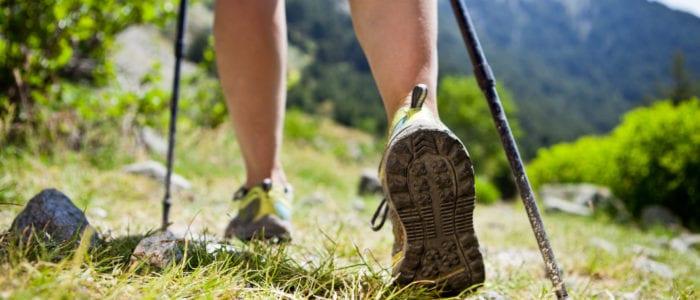Escursioni estive CEA Fontenova Centro Educazione Ambientale dal 1992